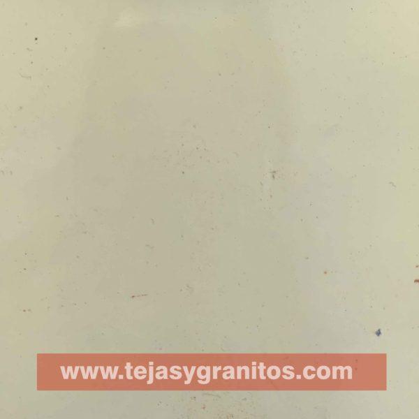 Azulejo de Talavera Blanco Mexicano