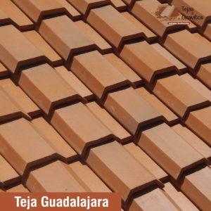 Teja Guadalajara